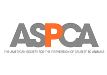 the-american-society-for-the-prevention-of-cruelty-to-animals